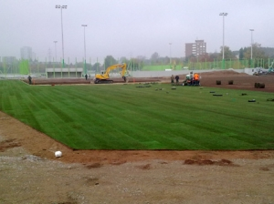 Stadion_10_New_Field_022